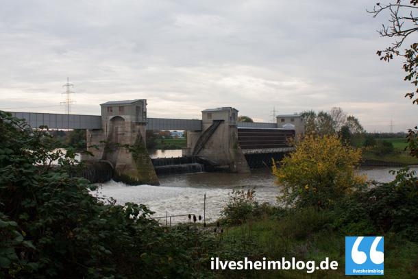 Hochwasser_Sperrtor_25102013_Ilvesheim_Ladenburg_004-0105-2